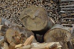 堆干燥木柴 免版税库存照片