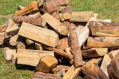 堆干燥木柴 免版税库存图片