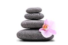 堆平衡的石头和一朵桃红色花 免版税库存照片
