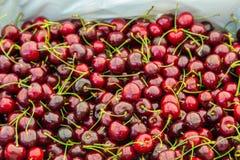 堆成熟樱桃堆 免版税图库摄影