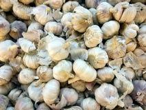 堆新鲜的大蒜在市场上 免版税库存图片