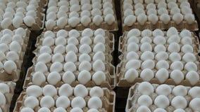 堆新鲜的有机鸡在保存待售的纸板包裹怂恿 影视素材