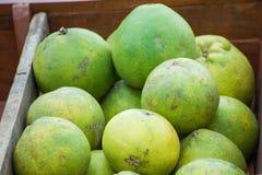 堆新鲜的葡萄柚 免版税图库摄影