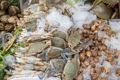 堆新鲜的蓝色游水螃蟹在海鲜市场上 海鲜新背景 图库摄影