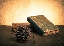 堆旧书和杉木锥体在老木桌上反对t 免版税图库摄影