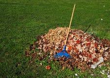 堆有上面一把蓝色犁耙的下落的叶子 免版税库存照片