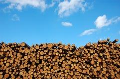 堆木头 图库摄影