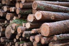 堆木材在多雪的瑞典 免版税库存照片