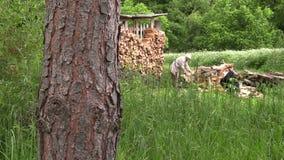 堆木材的棚和农夫工作者人剁木头 股票录像