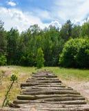 堆木注册太阳 免版税库存照片