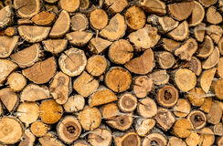 堆木头各种各样的精华堆积了破裂与spiderweb 免版税图库摄影