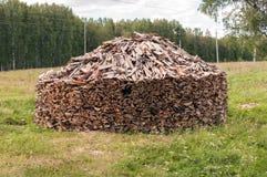 堆木柴在森林沼地 库存照片