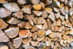 堆木柴自然背景 图库摄影
