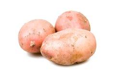 堆查出的土豆 免版税库存图片