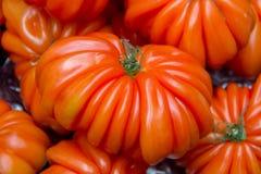 堆母牛心脏蕃茄 免版税库存图片