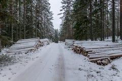 堆沿一条冬天路的木材在瑞典 库存图片