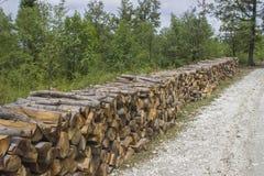堆沿森林公路的木材 免版税库存图片