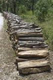 堆沿森林公路3的木材 免版税库存图片