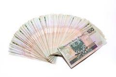 堆波兰钞票 库存照片