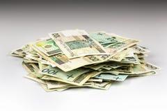 堆波兰钞票 免版税库存照片