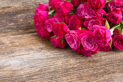 堆淡紫色玫瑰 库存照片