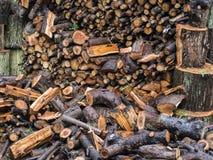 堆湿木柴 免版税图库摄影