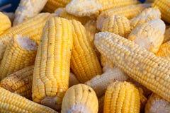 堆玉米 库存照片