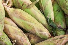 堆玉米 免版税库存照片