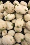 堆用小锄头土豆 免版税图库摄影
