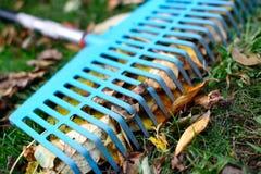 堆秋天离开与爱好者犁耙在草坪 免版税库存图片