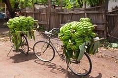堆积在自行车的堆绿色非洲香蕉在新鲜市场上在Mto wa姆布村庄,阿鲁沙区,坦桑尼亚 免版税库存照片
