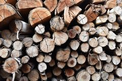 堆老木柴 免版税库存图片
