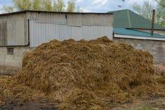 堆肥料 免版税库存图片