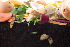 堆肥 免版税库存图片
