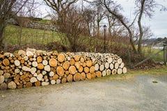 堆自然木日志 库存图片