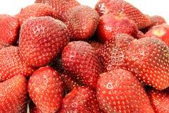 堆草莓 免版税库存照片