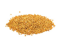 堆荞麦种子被隔绝在白色背景 免版税库存图片