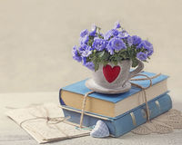堆蓝皮书和花 库存照片