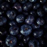 堆蓝莓 库存图片