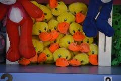 堆被充塞的鸭子坐架子 免版税库存照片