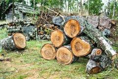 堆被切开的桦树日志 图库摄影