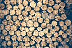 堆被削减的木树桩日志纹理 库存图片