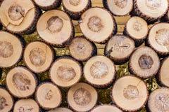 堆被削减的木树桩日志纹理 图库摄影
