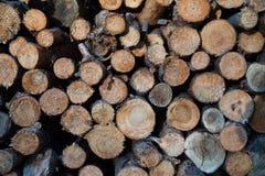 堆被剪切的木头 库存照片