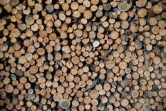 堆被剪切的木头 库存图片