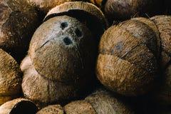 堆被放弃的椰子果壳 库存图片