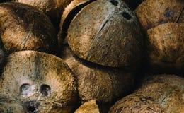 堆被放弃的椰子果壳 库存照片