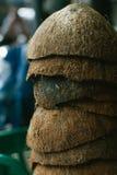 堆被放弃的椰子果壳 免版税库存照片