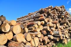 堆锯木杆锯木厂 免版税库存照片