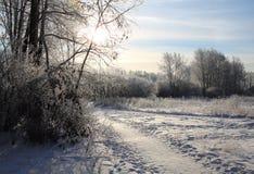 堆雪和雪样式,在领域风暴,交谈 免版税库存图片
